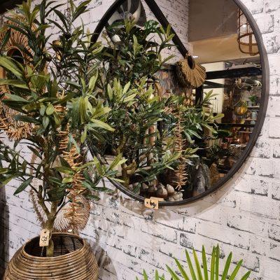 Bij Anne-Vaassen-spiegel